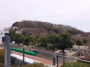 中央大学八王子キャンパス (2)